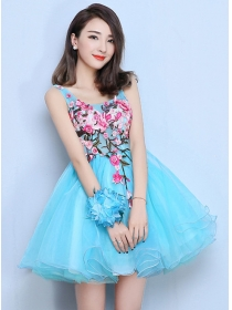 Charming New Flowers Embroidery Backless Organza Fluffy Dress