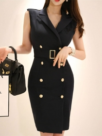 Korea Fashion Tailored Collar Double-breasted Skinny Dress
