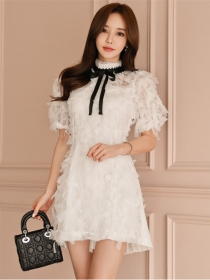 Grace Lady Bowknot Collar Feathers A-line Dress