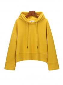 Autumn New 6 Colors Hooded Loosen Cotton Hoodies