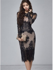 Retro Korea 2 Colors Lace Transparent Skinny Dress Set