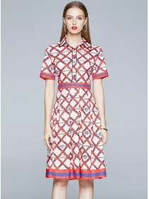 Europe Summer Shirt Collar Printings A-line Dress