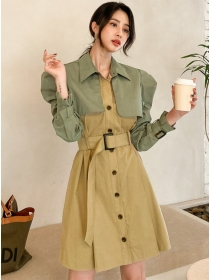 Vogue Lady Color Block Single-breasted Coat Dress