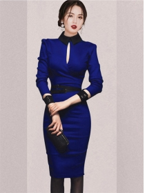 Modern OL Fitted Waist Skinny Long Sleeve Dress