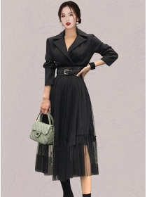 Modern Korea Tailored Collar Fitted Waist A-line Dress