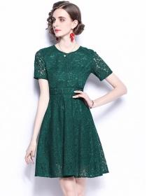 Europe Stylish Round Neck Short Sleeve Lace A-line Dress