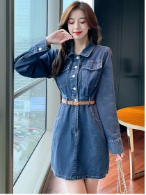 Fashion Lady Shirt Collar Long Sleeve Denim Dress