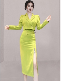 Modern 4 Colors Tailored Collar Split Slim Two Pieces Dress